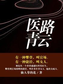 医路青云小说封面