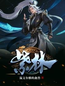 紫林小说封面