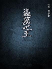 盗墓之王小说封面
