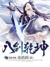 八剑乾坤小说封面