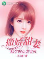 撒娇甜妻:陆少的心尖宝贝小说封面