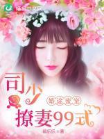 婚途蜜宠:司少撩妻99式小说封面