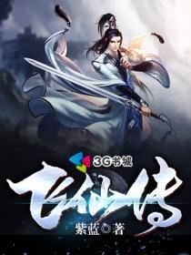 飞仙传小说封面