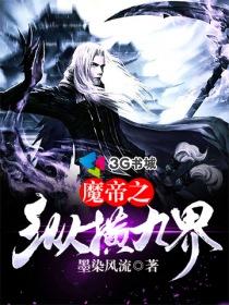 魔帝之縱橫九界小說封面