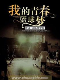 我的青春篮球梦小说封面