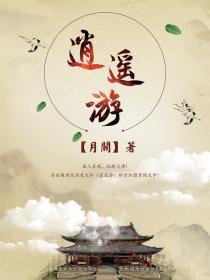 逍遥游小说封面