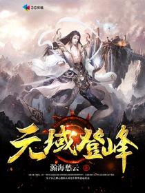 元域登峰小说封面