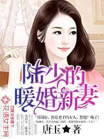 陆少的暖婚新妻小说封面