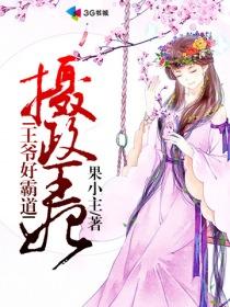 摄政王妃:王爷好霸道小说封面