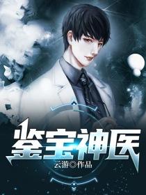 鑒寶神醫小說封面
