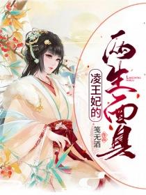 凌王妃的两生面具小说封面