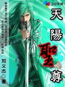 天阳圣尊小说封面