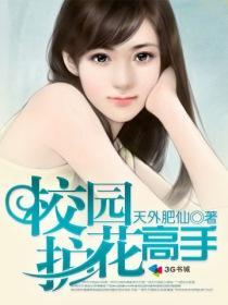 校园护花高手小说封面