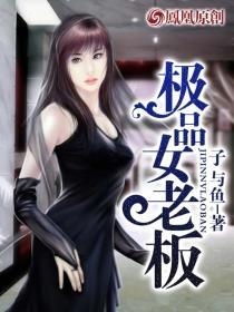 极品女老板小说封面