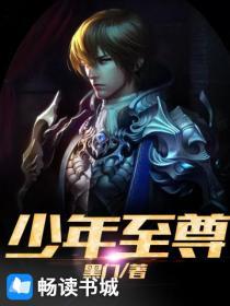少年至尊小说封面