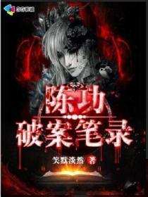 陈功破案笔录小说封面