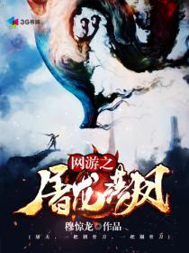 网游之屠龙落凤小说封面