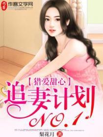 猎爱甜心:追妻计划NO.1小说封面
