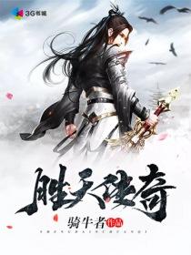 胜天传奇小说封面