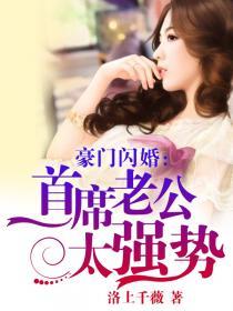 豪门闪婚:首席老公太强势小说封面