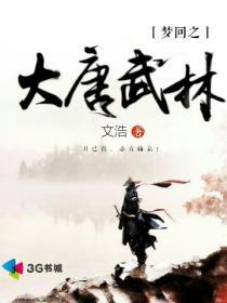 梦回之大唐武林小说封面