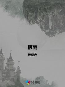 狼雨小说封面