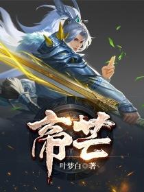 帝芒小说封面