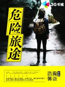 危险旅途小说封面