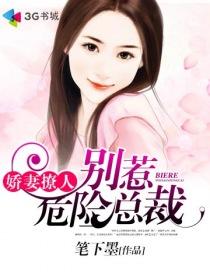 娇妻撩人:别惹危险总裁小说封面