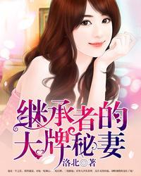 继承者的大牌秘妻小说封面