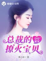 99°蜜宠:总裁的撩火宝贝小说封面