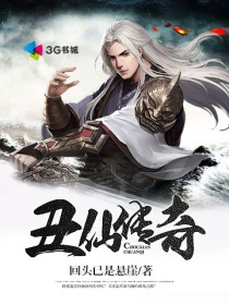 丑仙传奇小说封面