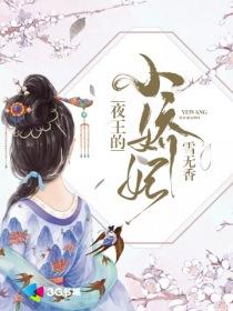 夜王的小嬌妃小說封面