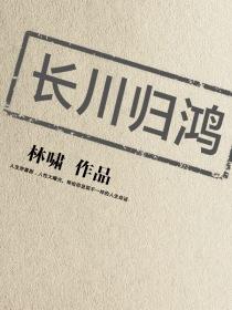 长川归鸿小说封面