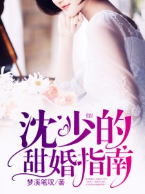 沈少的甜婚指南小说封面