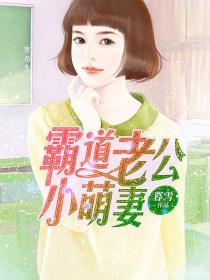 霸道老公小萌妻小说封面