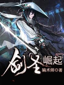 剑圣崛起小说封面