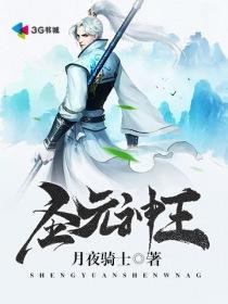 圣元神王小说封面
