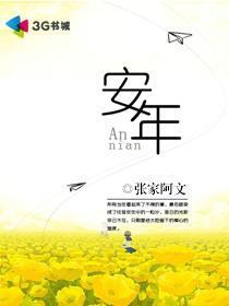 安年小说封面