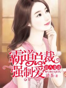 误入妻途:霸道总裁强制爱小说封面
