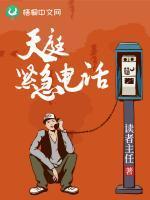天庭紧急电话小说封面