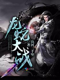 龙蛇大战小说封面