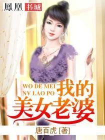 我的美女老婆小说封面