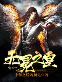 无冕之皇小说封面