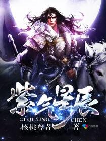 紫气星辰小说封面