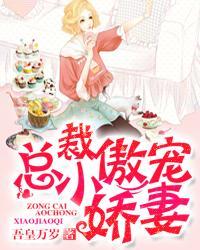 总裁傲宠小娇妻小说封面