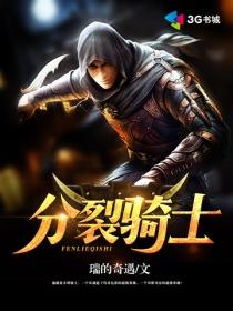分裂骑士小说封面