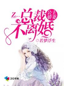 公主娇妻:总裁不离婚小说封面