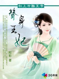 替身王妃小說封面