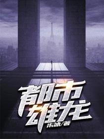 都市雄龙小说封面